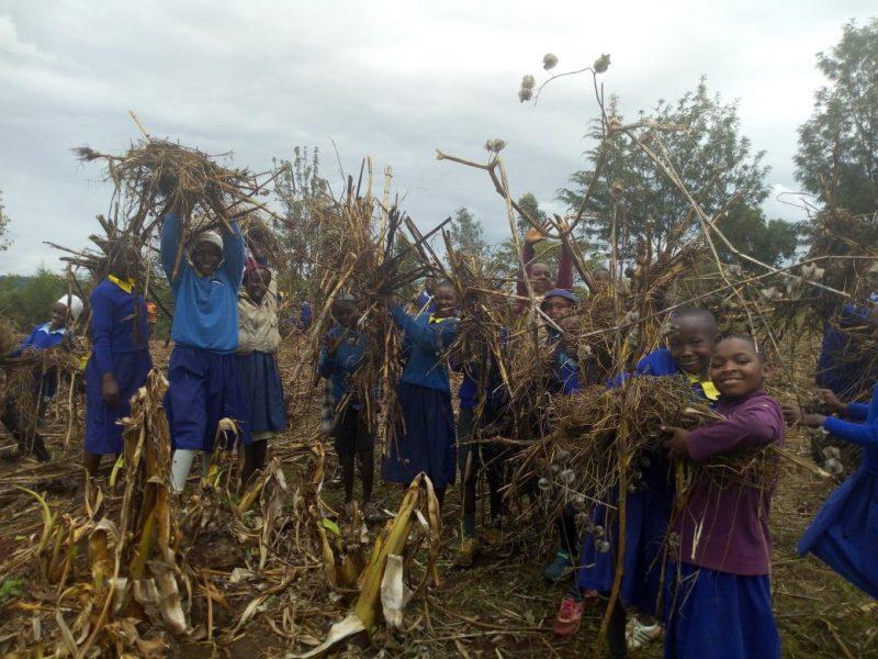 children collecting mulch