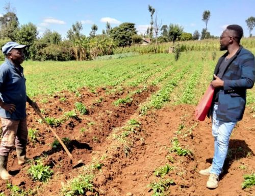 Farming success to be proud of